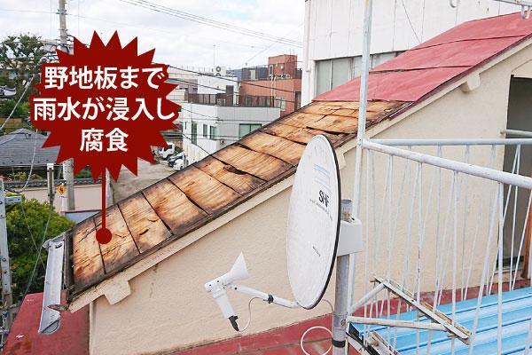 野地板まで雨水が浸入した片流れ屋根