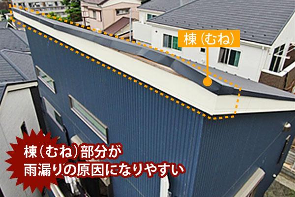 片流れ屋根は棟部分が雨漏り原因となりやすい