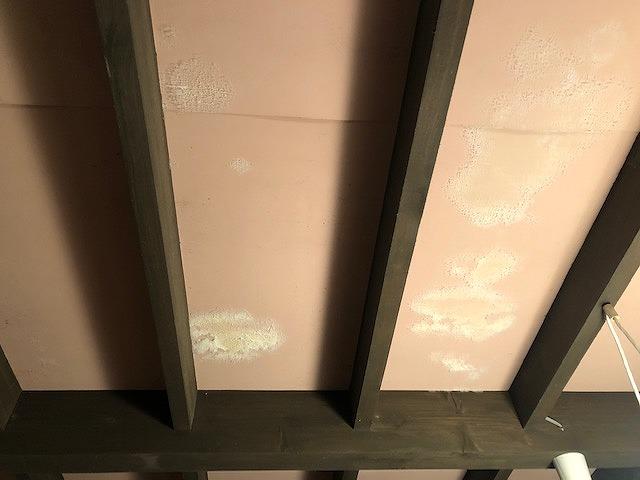 雨漏りでカビの生えた天井