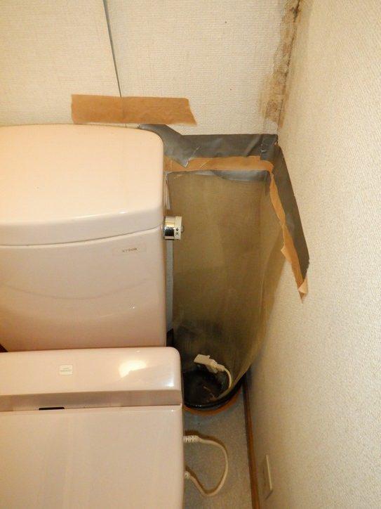 高崎市で雨漏りしてる建物の増築部分との境にある板金屋根を調査