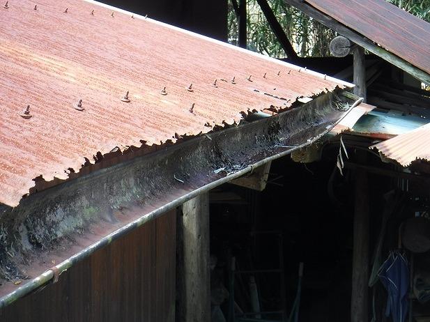 農機具小屋の軒樋とボロボロの波板の先端