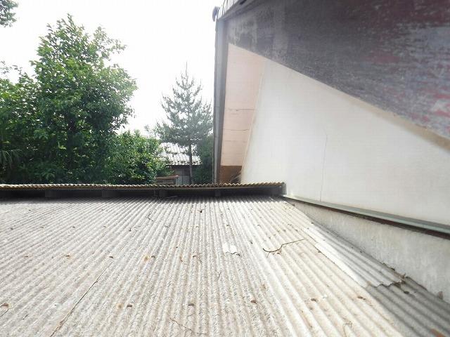 波板の上の軒天井