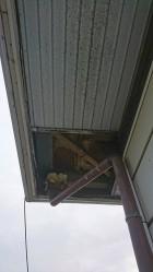 板金の軒天井剥がしたところ近景