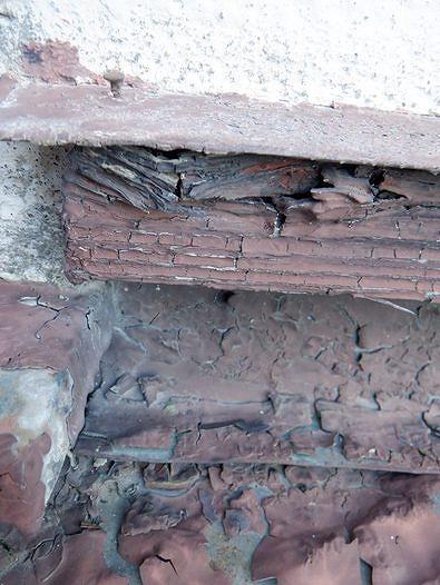 建物際の雨押え板金の下の木部
