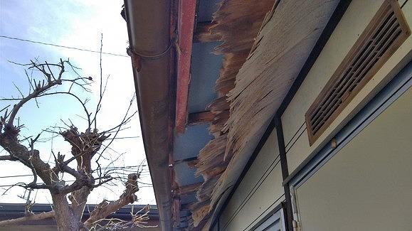 プレハブ小屋の軒天井の剥がれ