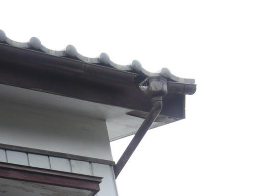 集水器から軒樋外れと軒天井剝がれ