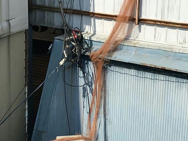 屋根の裏の網のからみ