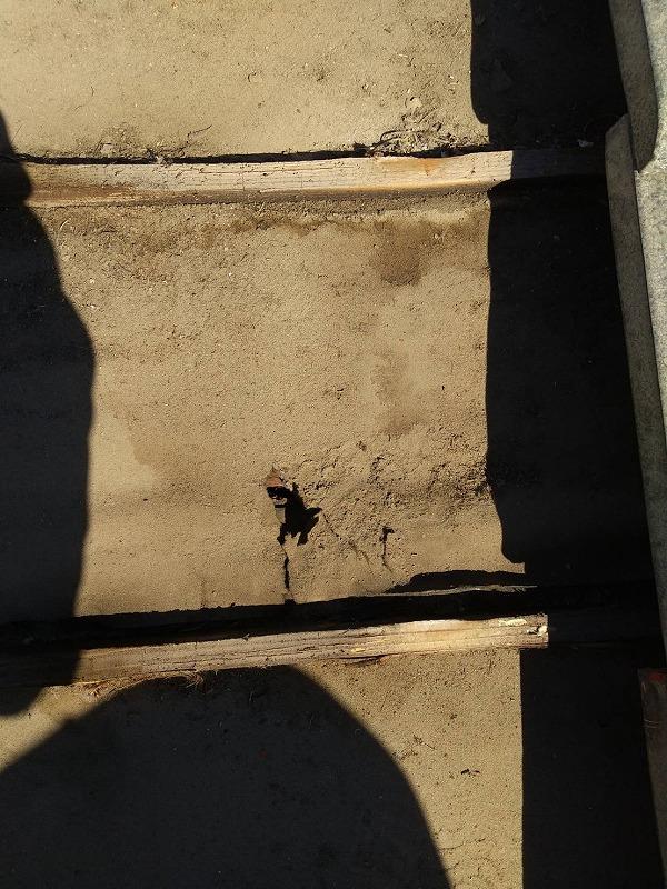 穴の開いた防水シート