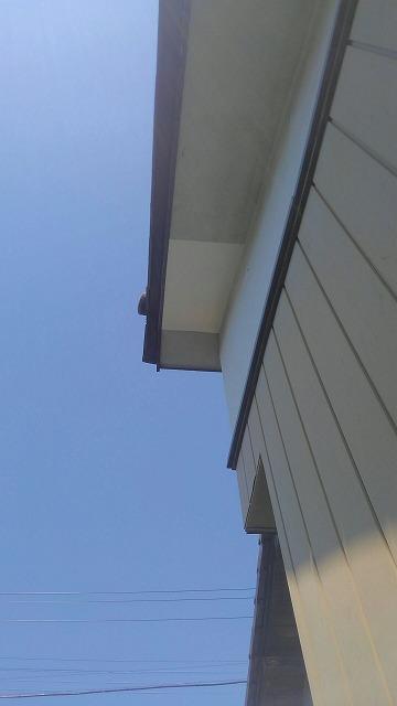 軒天井完成後南から
