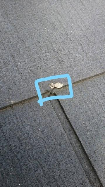 スレートの瓦のわずかな欠損