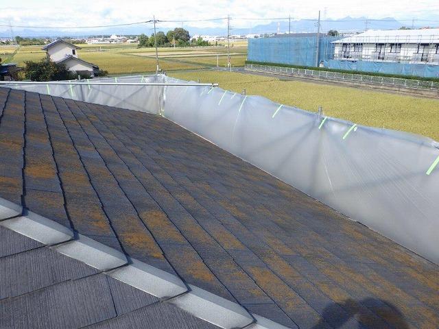 高水圧洗浄前の北側の屋根とビニール養生シート