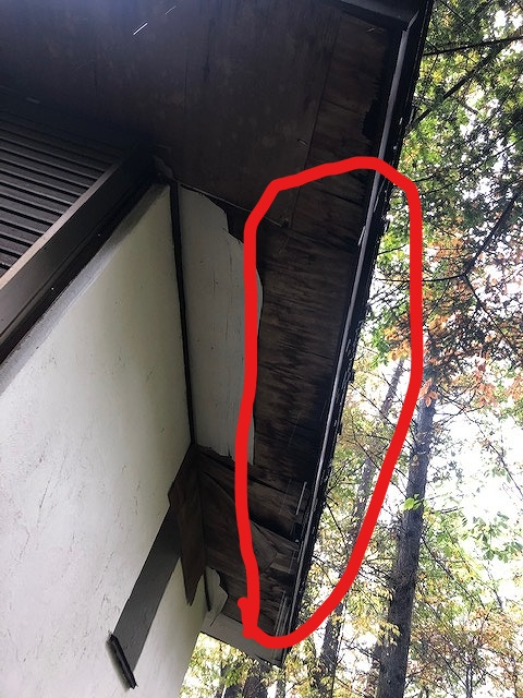 上側がはがれた軒天井