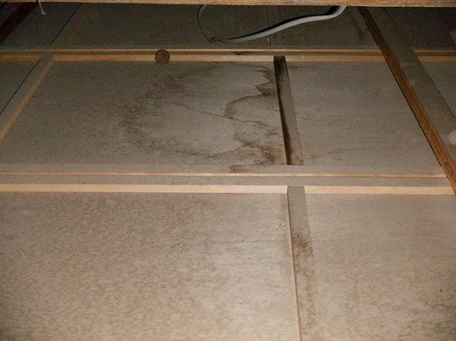 天井裏にできた雨漏りのシミ