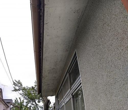 塗膜がポロポロ取れている軒天井