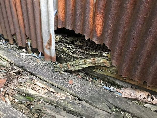 トタン波板が錆びて穴が開き下地の木部が傷み