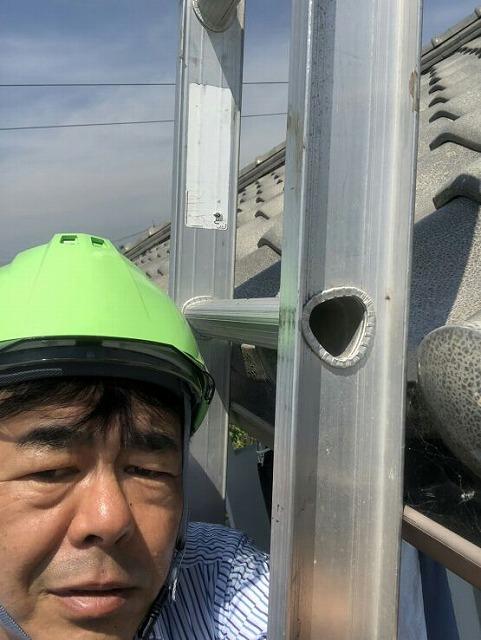 脚立に乗って屋根を調査