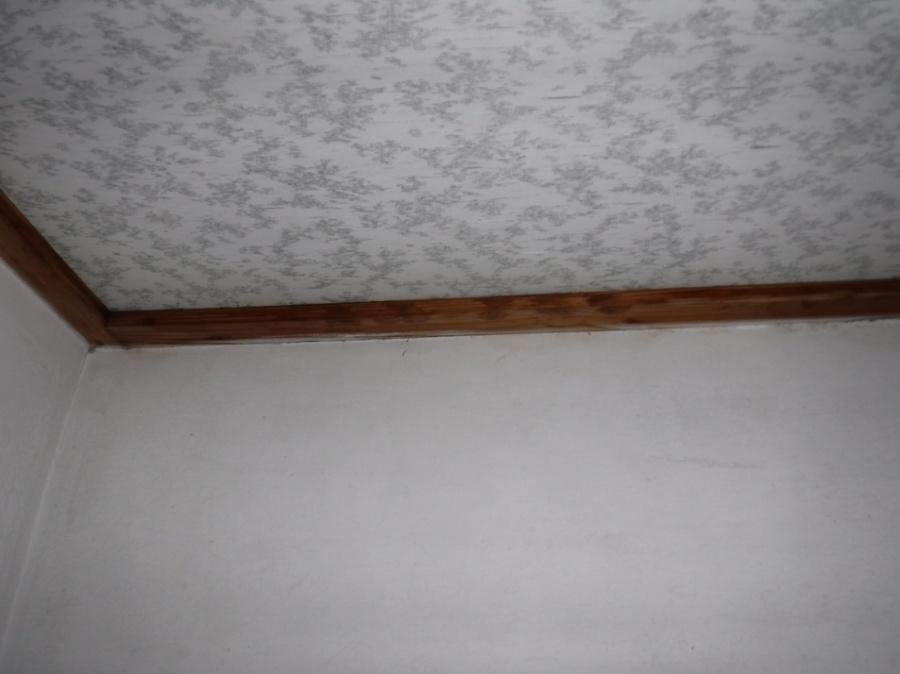トイレの天井廻り縁の雨漏りのシミの跡