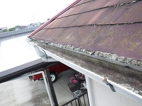 軒先に苔のあるスレートの屋根