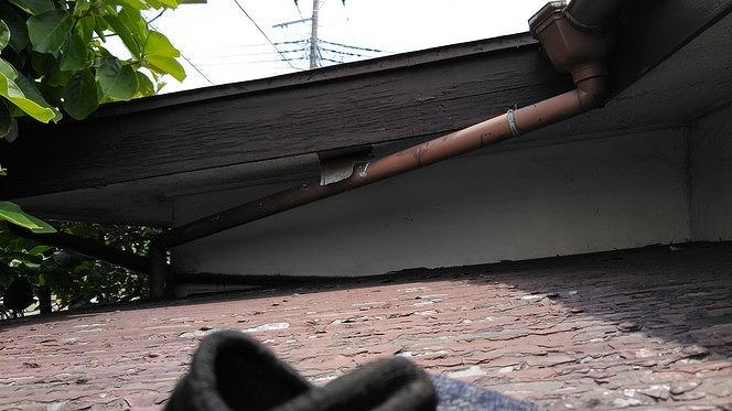 ベニヤの軒天井が剥がれて垂れているところ