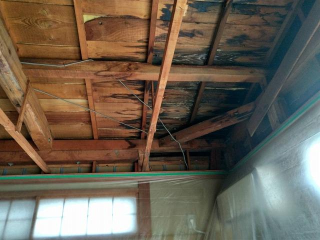 養生シートのある天井剥がして雨漏りしていたところ