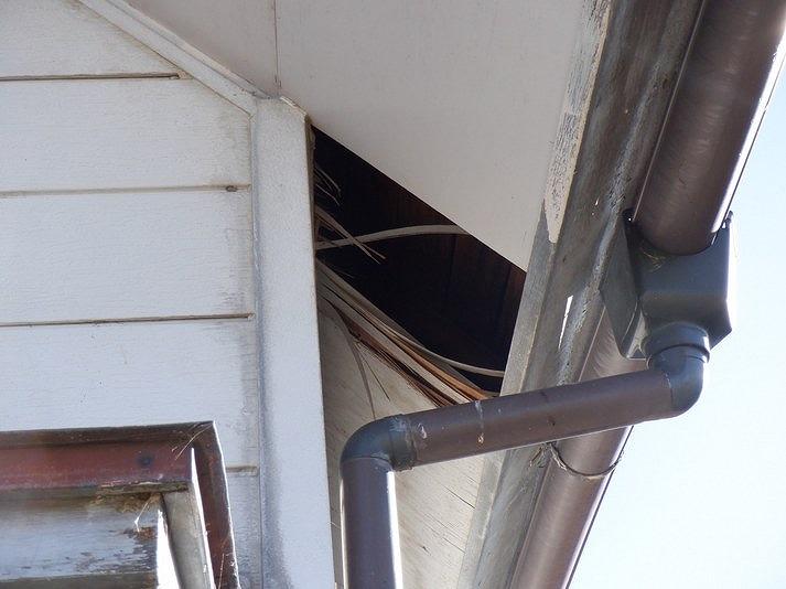 ベニヤの軒天井に穴が開いているので野地板が見えている