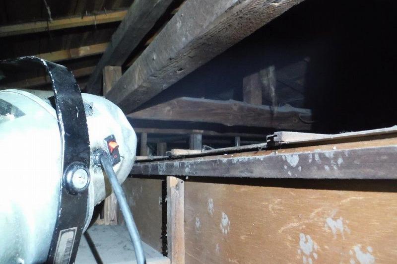 天井裏に噴霧器を使用して殺虫剤噴霧処理