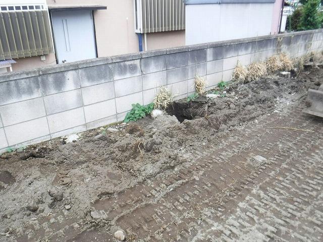 掘り出した切り株の穴
