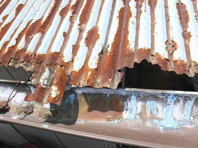 錆びて欠落したトタンの波板