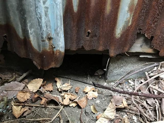 外壁のトタン波板の下部の錆びと欠損