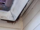 屋根の入隅のベニヤの軒天井の表面の剥がれ