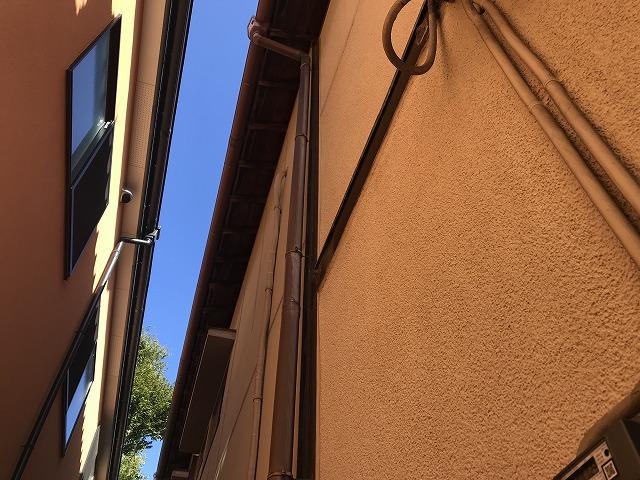 外壁と竪樋と柱