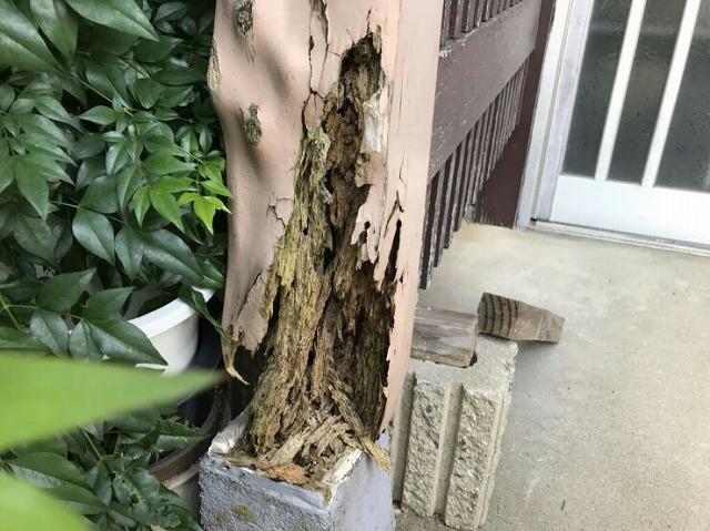 玄関の屋根を支える柱の腐ったところ根本近景