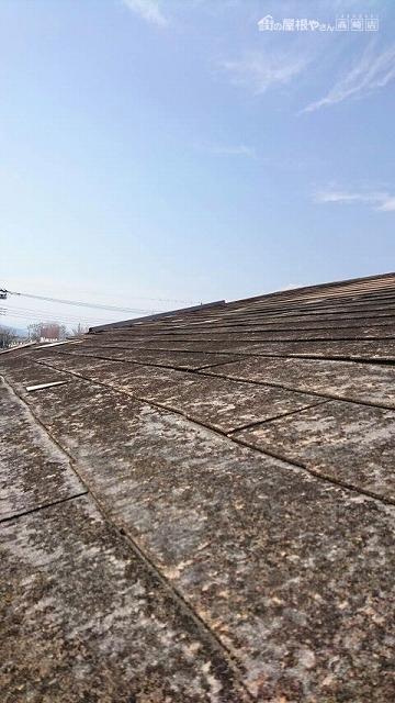 2階の屋根の全景