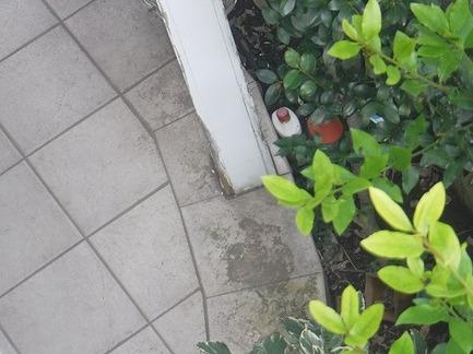 玄関腐食柱とタイル