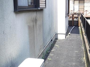 東側外壁リシン下部の汚れ