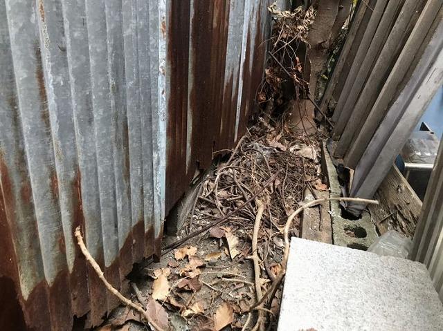 外壁のトタン波板の下の方が錆びて欠損