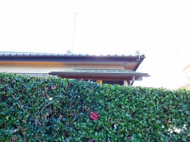 雨どい玄関垣根越し