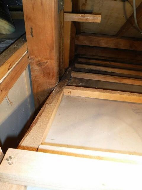 屋根裏石膏ボードのシミ