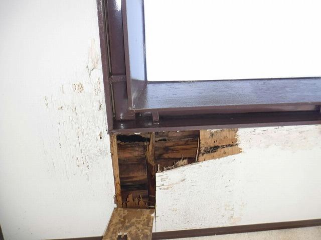 軒天井の穴の中を近くで見た状態