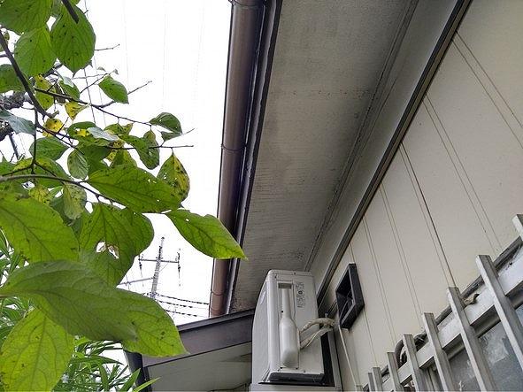 塗装が薄くなって木目の筋が見えている軒天井