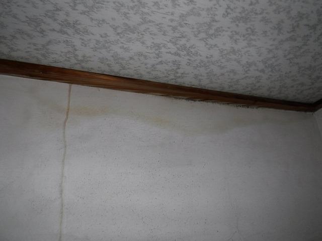 トイレの壁に茶色い雨漏りのシミ
