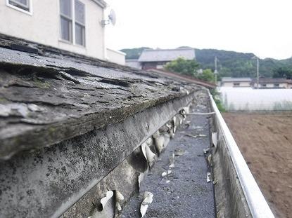 軒樋の中のパミールの粉末